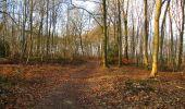 Trail On foot VIEUX-MOULIN - en forêt de Compiègne_23_la Grotte des Ramoneurs_le Mont Berny - Photo 127