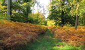 Randonnée Marche SAINT-JEAN-AUX-BOIS - en forêt de Compiègne_21_la Muette_les Clavières_la Brévière - Photo 66