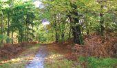 Randonnée A pied VILLERS-COTTERETS - le GR11A  dans la Forêt de Retz  - Photo 121