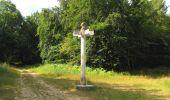 Randonnée Marche SAINT-JEAN-AUX-BOIS - en forêt de Compiègne_2_ruines gallo-romaines de Champlieu_les Petits Monts - Photo 133