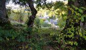 Trail Walk ORCIVAL - La chaine des Puys - Photo 1