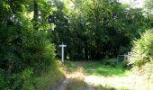 Randonnée Marche LACROIX-SAINT-OUEN - en forêt de Compiègne_35_la Croix Saint-Sauveur_le Ru du Goderu - Photo 27