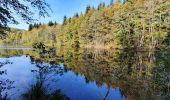 Trail Walk ECROMAGNY - Les 1000 étangs à Ecromagny - Photo 7