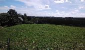 Randonnée Marche Braine-le-Château - Grp127 1 - Photo 6