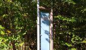 Randonnée Marche Tellin - repérage zero carbone 16092020 - Photo 23