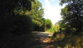 Randonnée Marche LACROIX-SAINT-OUEN - en forêt de Compiègne_35_la Croix Saint-Sauveur_le Ru du Goderu - Photo 49