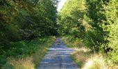Trail Walk DAMPLEUX - en forêt de Retz_80_sur la Route Tortue et la Route Droite - Photo 284