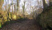 Trail On foot VIEUX-MOULIN - en forêt de Compiègne_23_la Grotte des Ramoneurs_le Mont Berny - Photo 57
