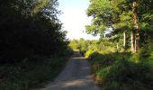 Trail Walk DAMPLEUX - en forêt de Retz_80_sur la Route Tortue et la Route Droite - Photo 142