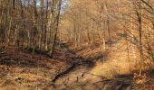 Trail Walk PIERREFONDS - en forêt de Compiègne_24_Tournantes sur le Voliard et sur la Fortelle_chaussée Brunehaut - Photo 59