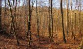 Trail Walk PIERREFONDS - en forêt de Compiègne_24_Tournantes sur le Voliard et sur la Fortelle_chaussée Brunehaut - Photo 48