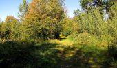 Trail Walk DAMPLEUX - en forêt de Retz_80_sur la Route Tortue et la Route Droite - Photo 302