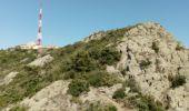 Randonnée Marche LA SEYNE-SUR-MER - fabregas le Brusc - Photo 3