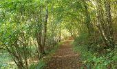 Trail Walk Viroinval - De Nismes à Petigny par le Tienne du Lion - Photo 2
