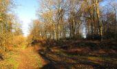 Trail Walk RETHEUIL - en forêt de Retz_76_dans les forêts de Retz et de Compiègne - Photo 40