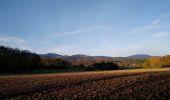 Trail Walk SENTHEIM - Sentheimtour Covid série 2 - Photo 1