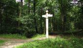 Randonnée Marche SAINT-JEAN-AUX-BOIS - en forêt de Compiègne_2_ruines gallo-romaines de Champlieu_les Petits Monts - Photo 110