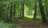 Randonnée Marche SAINT-JEAN-AUX-BOIS - en forêt de Compiègne_2_ruines gallo-romaines de Champlieu_les Petits Monts - Photo 107