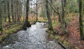 Trail Walk Sainte-Ode - rando lavacherie 29/12/2020 - Photo 15