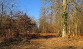 Trail Walk PIERREFONDS - en forêt de Compiègne_24_Tournantes sur le Voliard et sur la Fortelle_chaussée Brunehaut - Photo 17