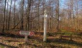 Trail Walk RETHEUIL - en forêt de Retz_76_dans les forêts de Retz et de Compiègne - Photo 85