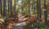 Trail Walk LONGPONT - en forêt de Retz_29_Longpont_la cave du Diable_A - Photo 38