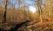 Trail Walk PIERREFONDS - en forêt de Compiègne_24_Tournantes sur le Voliard et sur la Fortelle_chaussée Brunehaut - Photo 53