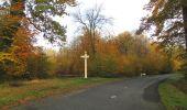 Randonnée Marche SAINT-JEAN-AUX-BOIS - en forêt de Compiègne_32_11_2019_les Tournantes de la Muette et sous la Tête Saint-Jean - Photo 151