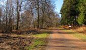 Trail Walk RETHEUIL - en forêt de Retz_76_dans les forêts de Retz et de Compiègne - Photo 139