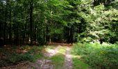Randonnée Marche HARAMONT - en forêt de Retz_79_08_2019_vers Taillefontaine et Retheuil par les lisières - Photo 97