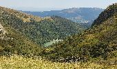 Trail Walk METZERAL - Steinabruck - Le Hohneck et ses 3 lacs Fischboedle, Altenweiher et Schiessrothried - Photo 39