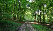 Randonnée Marche HARAMONT - en forêt de Retz_79_08_2019_vers Taillefontaine et Retheuil par les lisières - Photo 7