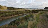 Randonnée Marche MESQUER - la pointe de Merquel à marée basse - Photo 5