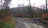 Trail On foot VIEUX-MOULIN - en forêt de Compiègne_23_la Grotte des Ramoneurs_le Mont Berny - Photo 123