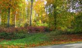 Randonnée Marche SAINT-JEAN-AUX-BOIS - en forêt de Compiègne_32_11_2019_les Tournantes de la Muette et sous la Tête Saint-Jean - Photo 185
