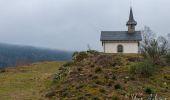 Trail Walk LE MENIL - Boucle de La Chapelle de la Pitié  - Photo 6