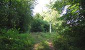 Randonnée Marche LACROIX-SAINT-OUEN - en forêt de Compiègne_35_la Croix Saint-Sauveur_le Ru du Goderu - Photo 22