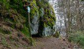 Randonnée Marche LE MENIL - Grande boucle au départ des chalets de la Feigne sur de l'Eau - Photo 2