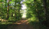 Randonnée Marche LACROIX-SAINT-OUEN - en forêt de Compiègne_35_la Croix Saint-Sauveur_le Ru du Goderu - Photo 56