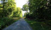 Trail Walk DAMPLEUX - en forêt de Retz_80_sur la Route Tortue et la Route Droite - Photo 205