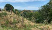 Trail Walk MURAT - Chastel-sur-Murat  - Photo 12
