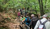 Randonnée Marche Aywaille - Ninglinspo - Photo 4