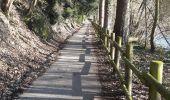 Randonnée Marche Rochefort - Lomme-Lesse: Rochefort-Ciergnon - Photo 7