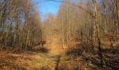 Trail Walk PIERREFONDS - en forêt de Compiègne_24_Tournantes sur le Voliard et sur la Fortelle_chaussée Brunehaut - Photo 57