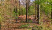 Randonnée Marche LONGPONT - en forêt de Retz_77_Longpont_Puiseux en Retz_AR - Photo 102