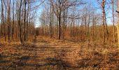 Trail Walk PIERREFONDS - en forêt de Compiègne_24_Tournantes sur le Voliard et sur la Fortelle_chaussée Brunehaut - Photo 13