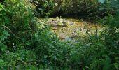 Randonnée Marche LOCMELAR - ballade 270719 - Photo 29