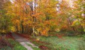 Randonnée Marche SAINT-JEAN-AUX-BOIS - en forêt de Compiègne_32_11_2019_les Tournantes de la Muette et sous la Tête Saint-Jean - Photo 133