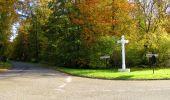 Randonnée Marche SAINT-JEAN-AUX-BOIS - en forêt de Compiègne_32_11_2019_les Tournantes de la Muette et sous la Tête Saint-Jean - Photo 193