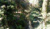 Trail Mountain bike SAINT-VALERIEN - Vallée de l'Orvane 1 - Photo 3